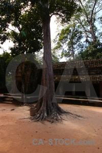 Siem reap angkor ruin buddhism column.