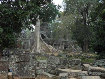 Siem reap lichen ruin buddhism sky.