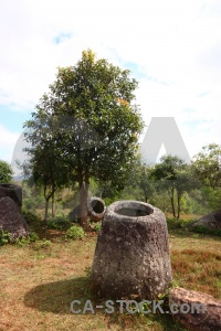 Sky fungus megalithic plain of jars urn.