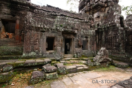 Sky fungus stone temple khmer.