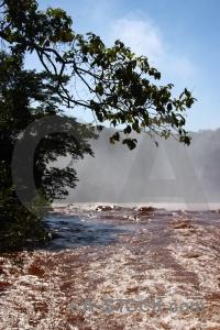 Sky iguassu falls tree argentina iguazu.