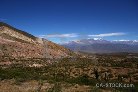 Sky salta tour 2 altitude south america cactus.