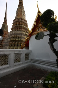 Sky southeast asia buddhism tree gold.