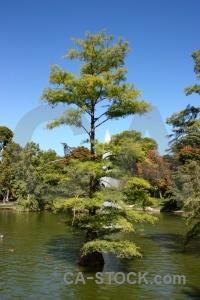 Sky spain water europe tree.