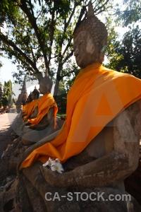 Sky statue tree wat yai chai mongkhon unesco.