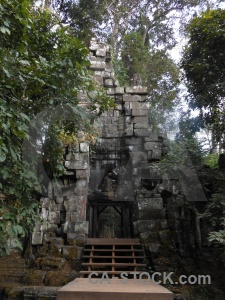 Sky temple tree asia cambodia.