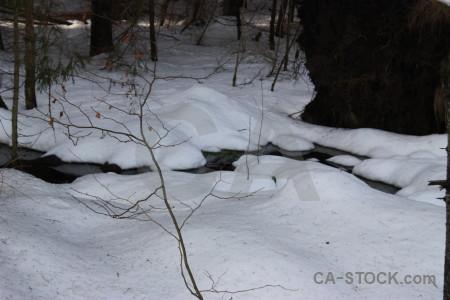 Snow gray winter.