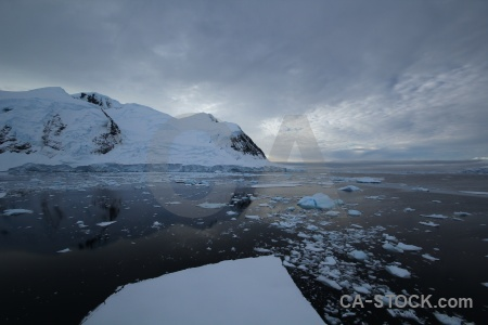 Snow sea ice snowcap antarctic peninsula water.