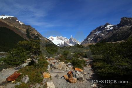 Snowcap branch senda a laguna torre patagonia valley.
