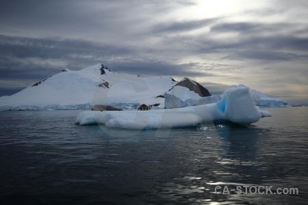 Snowcap crabeater iceberg mountain antarctic peninsula.