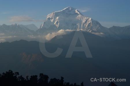 Snowcap dhaulagiri nepal ghoreapani trek.