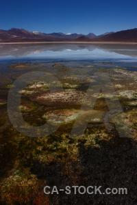 South america altitude andes reflection laguna blanca.