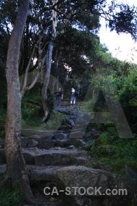 South america altitude path inca trail branch.