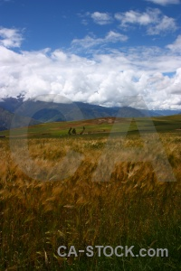 South america landscape mountain grass maras.