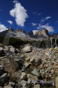 South america landscape patagonia circuit trek tree.