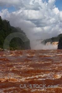 South america tree iguacu falls river unesco.