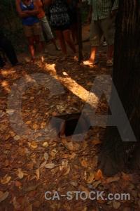 Southeast asia cu chi tunnels viet cong vietnam leaf.