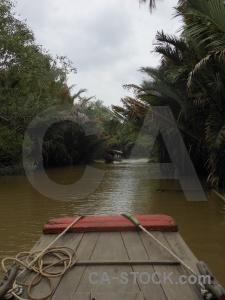 Southeast asia my tho mangrove vietnam river.