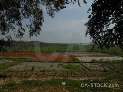 Southeast asia phnom penh choeung ek mass grave killing fields.