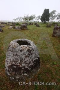 Southeast asia tree sky stone megalithic.
