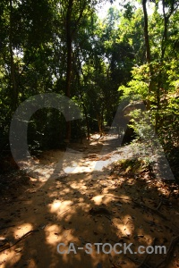 Southeast asia trek kbal spean spien path.