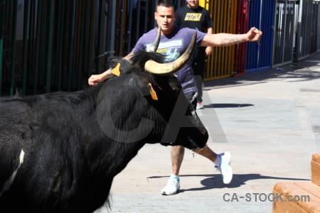 Spain bull running horn person europe.