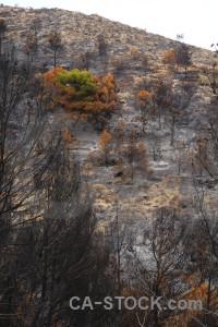 Spain europe javea montgo fire burnt.