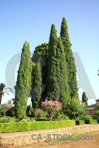 Spain garden europe green park.