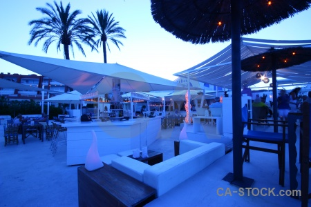 Spain javea palm tree europe bar.