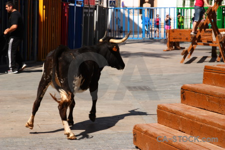 Spain person javea bull orange.