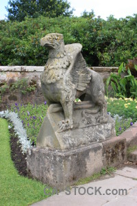 Statue green animal.