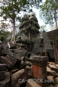 Stone angkor ta prohm buddhism tree.