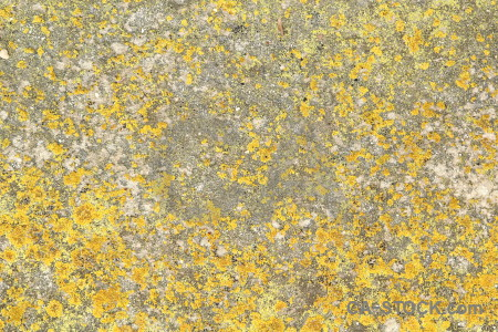 Stone orange texture yellow rock.