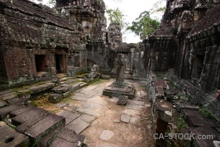 Stone tree khmer banteay kdei sky.