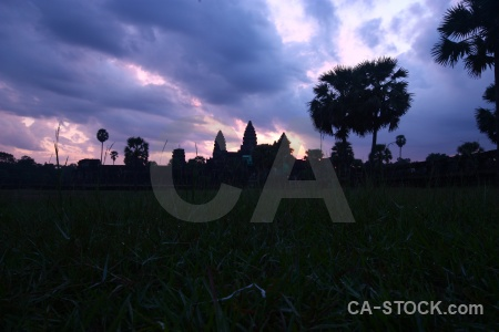 Sunrise tree angkor wat cambodia sky.
