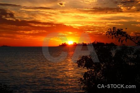 Sunset sky water tree sun.