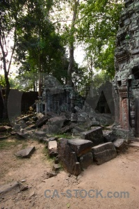 Ta prohm block buddhism unesco tree.