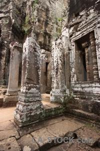 Temple angkor thom buddhist stone fungus.