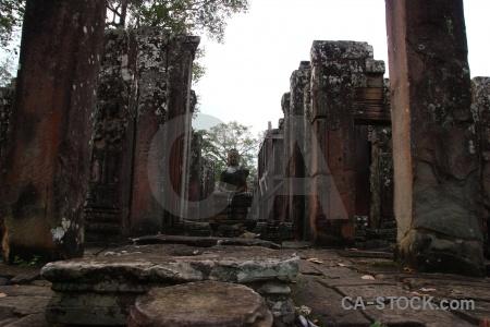 Temple cambodia buddhist fungus buddha.