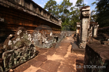 Temple ruin block stone tree.