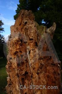 Texture brown blue rock.