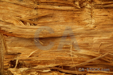 Texture rough javea spain wood.