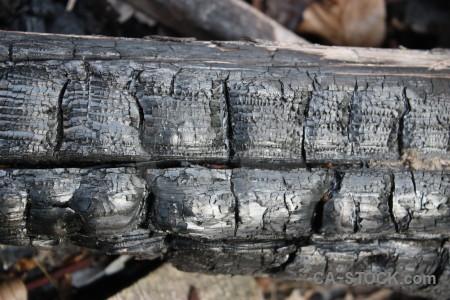 Texture wood gray burnt.