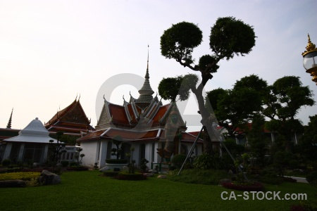 Thailand sky bangkok grass southeast asia.