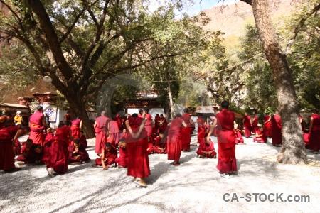 Tibet buddhism monk sera monastery altitude.