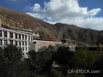 Tibet building tree cloud buddhism.