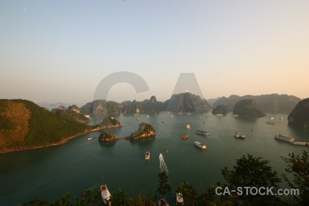 Titov island vehicle tree vinh ha long bay.