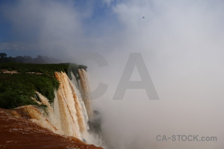 Tree argentina spray river iguassu falls.