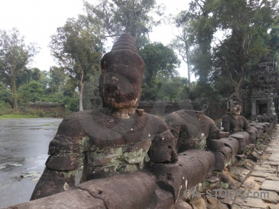 Tree buddhism preah khan siem reap asia.