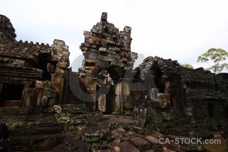 Tree buddhism stone siem reap temple.